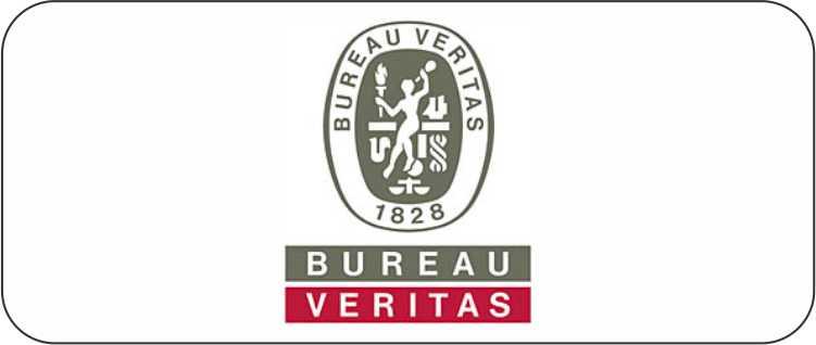 Bureav Veritas Logo